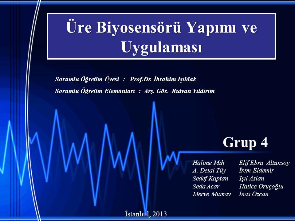 Üre Biyosensörü Yapımı ve Uygulaması Grup 4 Halime Mıh Elif Ebru Altunsoy A. Delal Tüy İrem Eldemir Sedef Kaptan Işıl Aslan Seda Acar Hatice Oruçoğlu