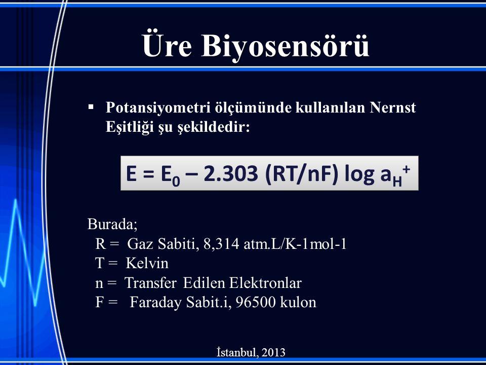 Üre Biyosensörü  Potansiyometri ölçümünde kullanılan Nernst Eşitliği şu şekildedir: Burada; R = Gaz Sabiti, 8,314 atm.L/K-1mol-1 T = Kelvin n = Transfer Edilen Elektronlar F = Faraday Sabit.i, 96500 kulon E = E 0 – 2.303 (RT/nF) log a H + İstanbul, 2013