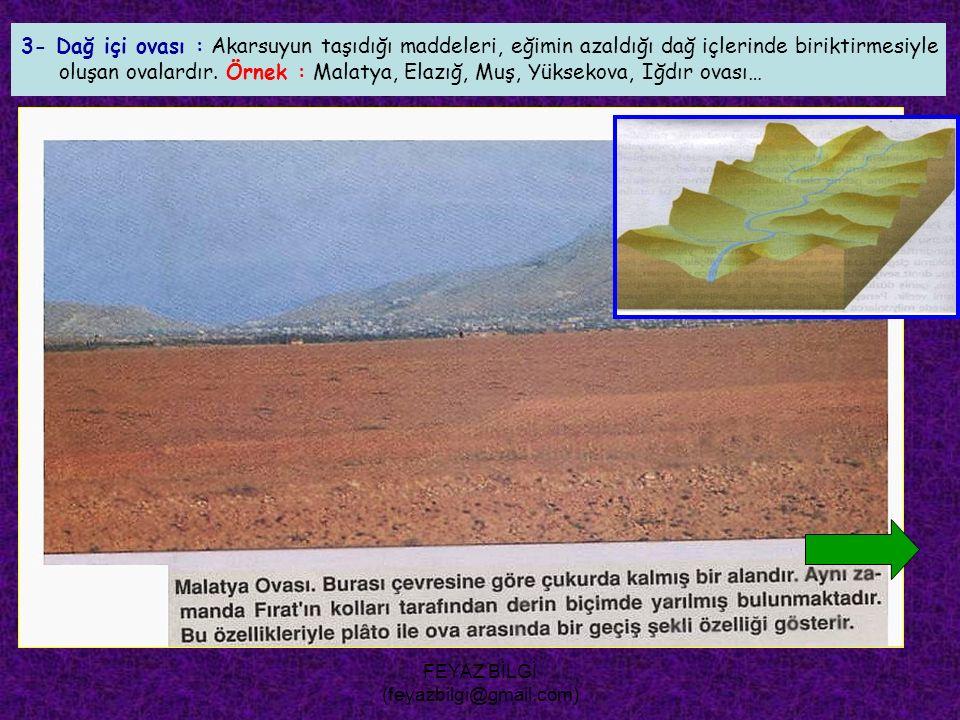FEYAZ BİLGİ (feyazbilgi@gmail.com) 2- Dağ eteği ovası : Dağ eteklerinde, birikinti konileri ve yelpazelerinin birleşmesiyle oluşan ovalardır. Örnek :