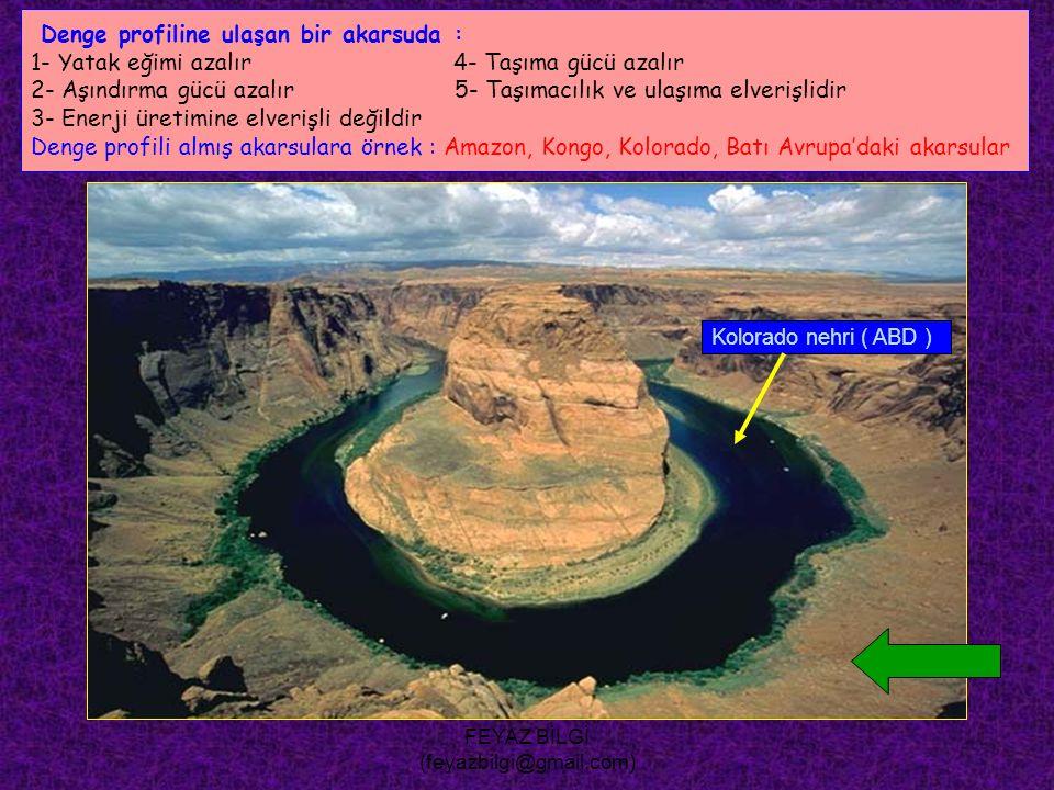 FEYAZ BİLGİ (feyazbilgi@gmail.com) Bir akarsuyun ağzında delta bulunması, bu akarsuyla ilgili olarak aşağıdakilerden hangisinin göstergesi olamaz .