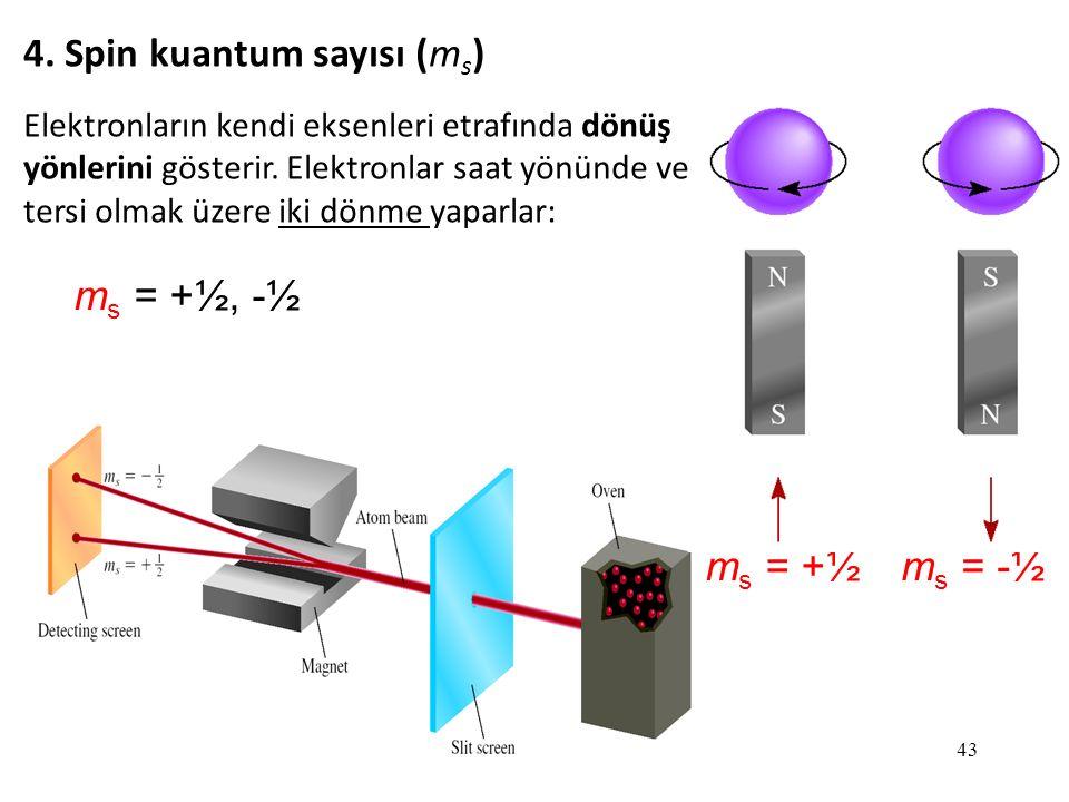 43 m s = +½, -½ 4. Spin kuantum sayısı (m s ) m s = -½m s = +½ Elektronların kendi eksenleri etrafında dönüş yönlerini gösterir. Elektronlar saat yönü