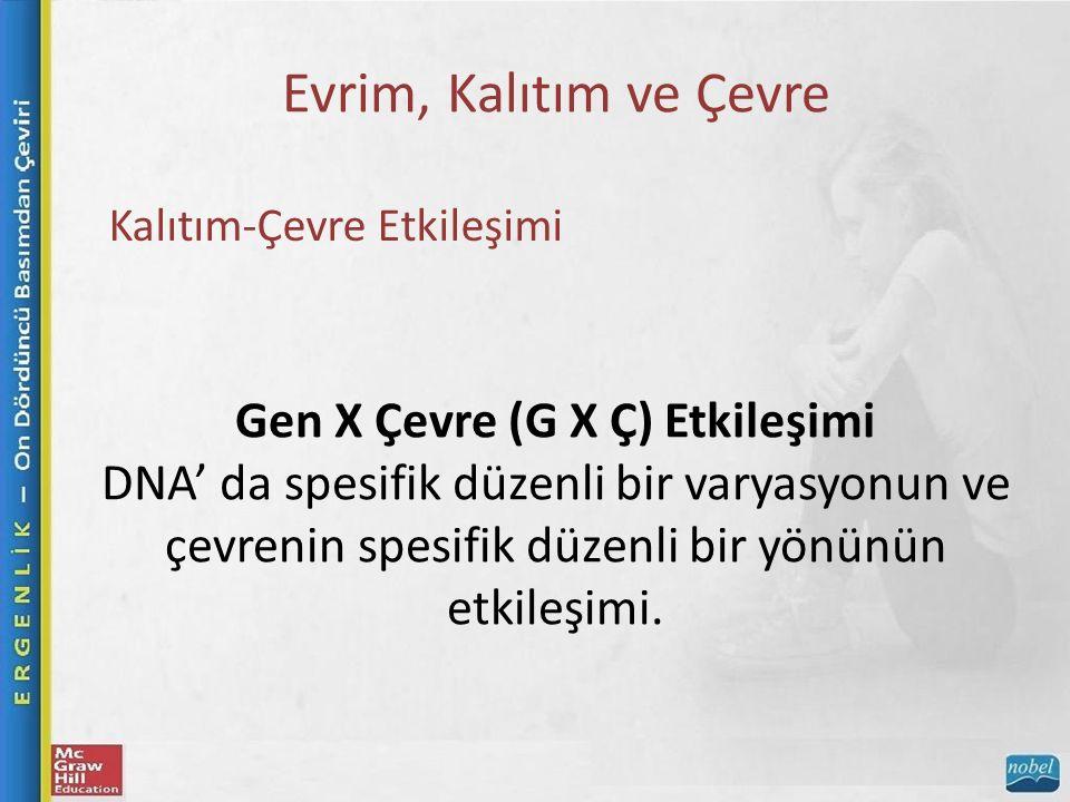Evrim, Kalıtım ve Çevre Kalıtım-Çevre Etkileşimi Gen X Çevre (G X Ç) Etkileşimi DNA' da spesifik düzenli bir varyasyonun ve çevrenin spesifik düzenli bir yönünün etkileşimi.
