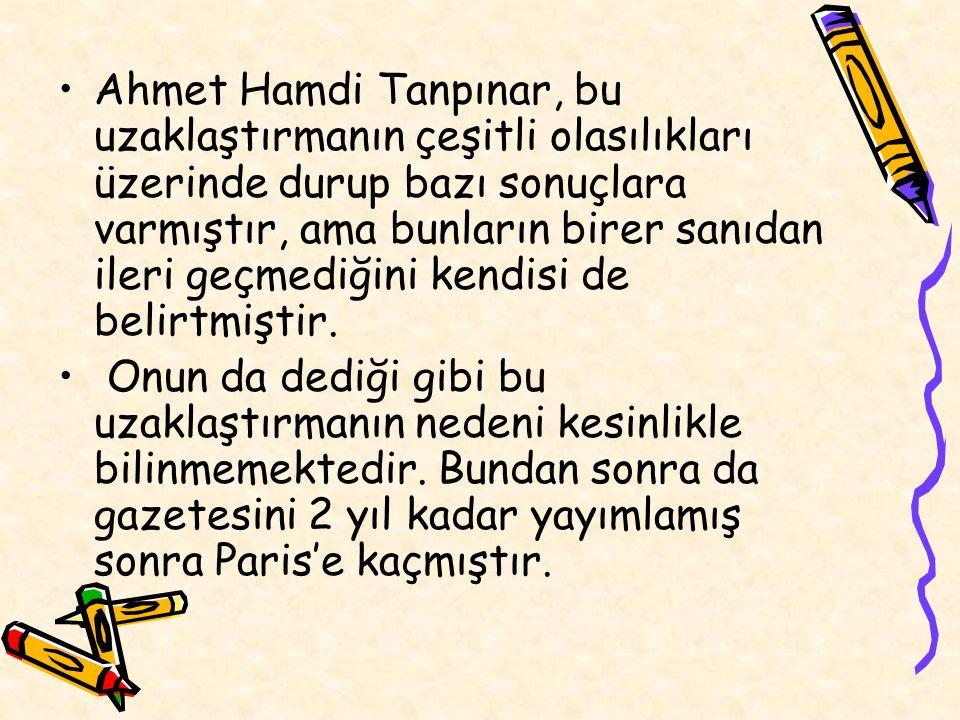Ahmet Hamdi Tanpınar, bu uzaklaştırmanın çeşitli olasılıkları üzerinde durup bazı sonuçlara varmıştır, ama bunların birer sanıdan ileri geçmediğini ke