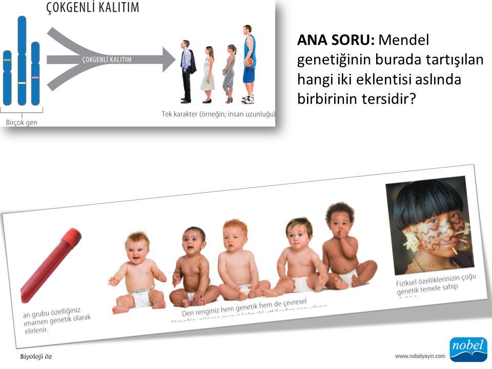 ANA SORU: Mendel genetiğinin burada tartışılan hangi iki eklentisi aslında birbirinin tersidir