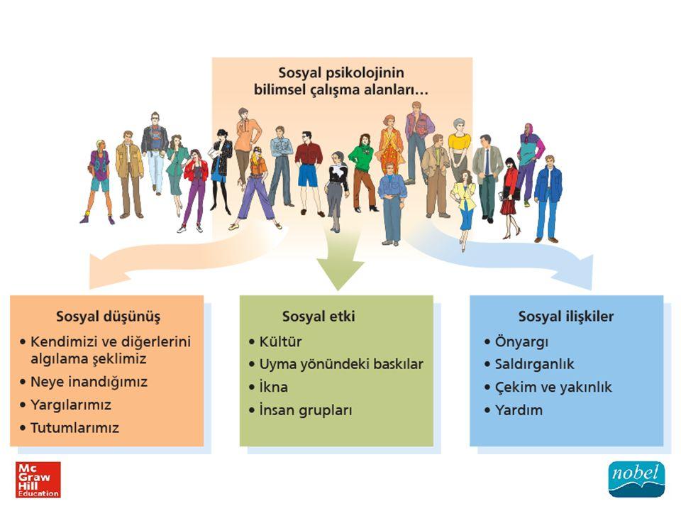 Sosyal psikologlar fikir ve bulgularını kuramlar hâlinde düzenlerler.