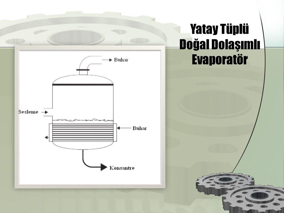 Yatay Tüplü Doğal Dolaşımlı Evaporatör