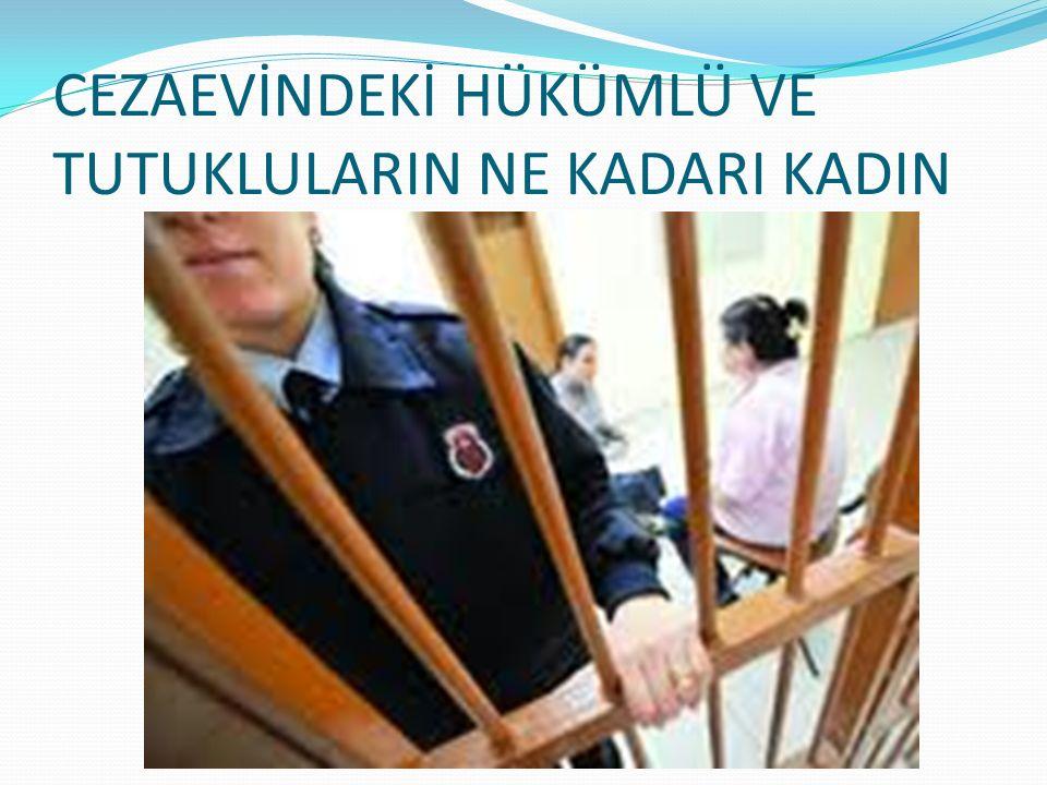 Türkiye'de 120 bin mahkumdan 2 bin 500'ü kadın.Birçoğu ekonomik yetersizlik nedeniyle suçunu çocuğuyla çekiyor.Kasım 2010 verilerine göre bu durumda 479 çocuk var.