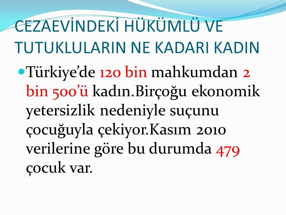 Türkiye'de 120 bin mahkumdan 2 bin 500'ü kadın.Birçoğu ekonomik yetersizlik nedeniyle suçunu çocuğuyla çekiyor.Kasım 2010 verilerine göre bu durumda 4