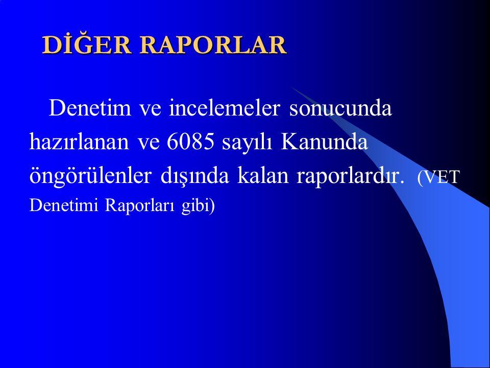 DİĞER RAPORLAR Denetim ve incelemeler sonucunda hazırlanan ve 6085 sayılı Kanunda öngörülenler dışında kalan raporlardır.