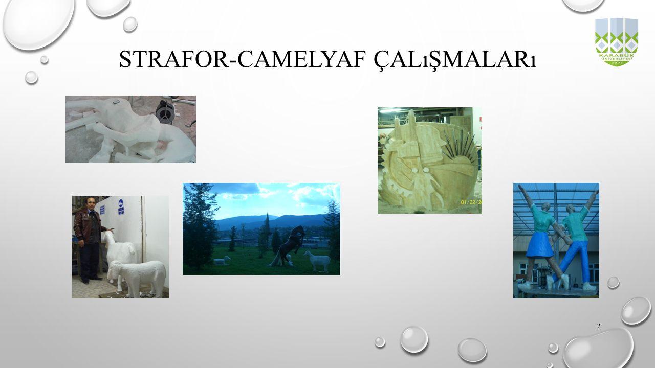STRAFOR-CAMELYAF ÇALıŞMALARı 2