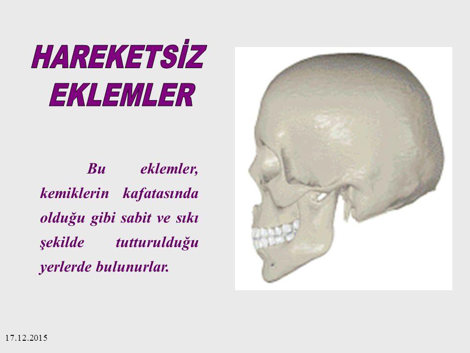 17.12.2015 Bu eklemler, kemiklerin kafatasında olduğu gibi sabit ve sıkı şekilde tutturulduğu yerlerde bulunurlar.