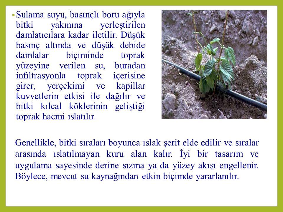 LATERAL BORU HATLARI Bitki sıraları boyunca döşenen ve üzerinde damlatıcılar bulunan boru hatlarıdır.