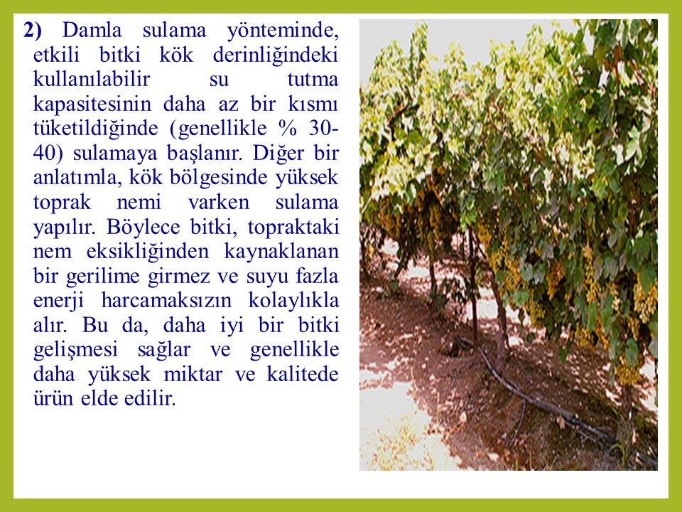 3) Damla sulama yönteminde, bitki besin elementleri sulama suyuna karıştırılarak verilir.