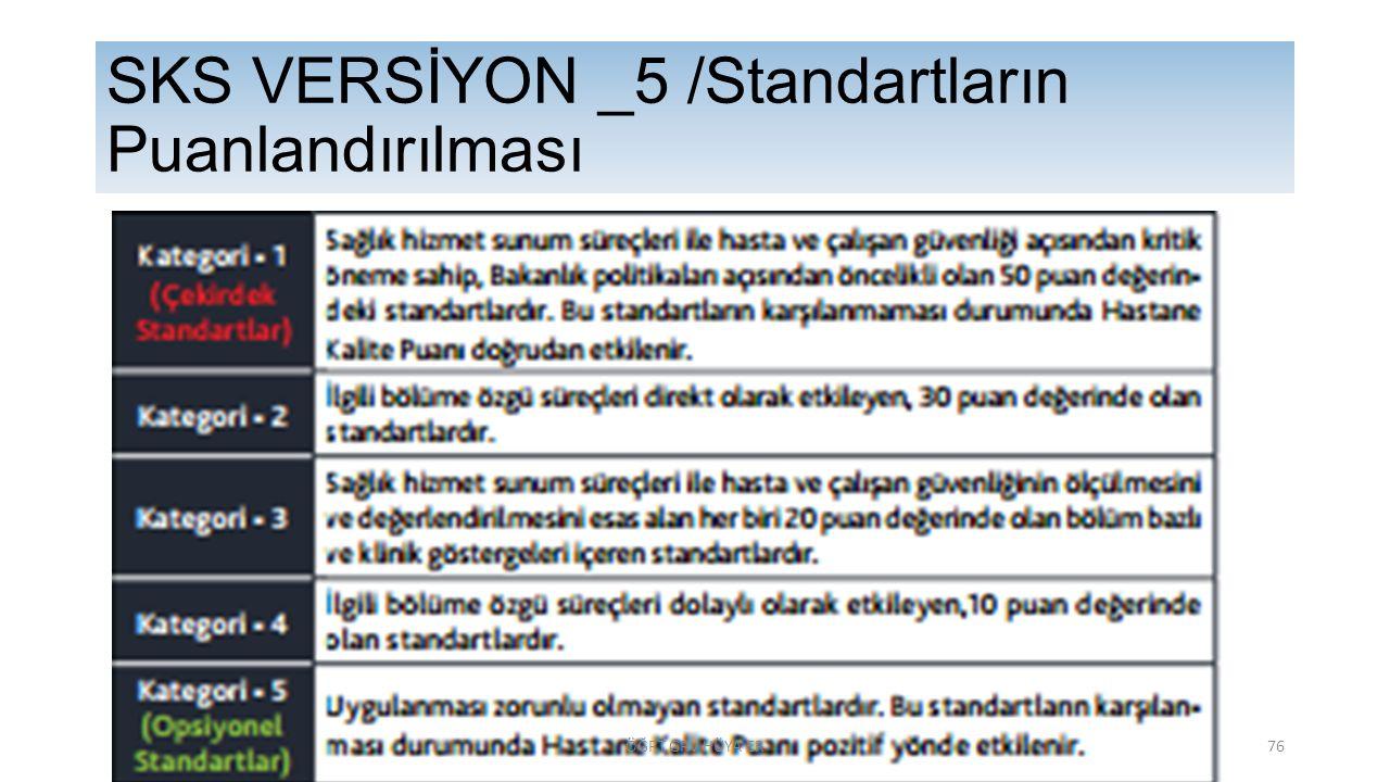 SKS VERSİYON _5 /Standartların Puanlandırılması ÖĞRT.GRV HÜYA ER76