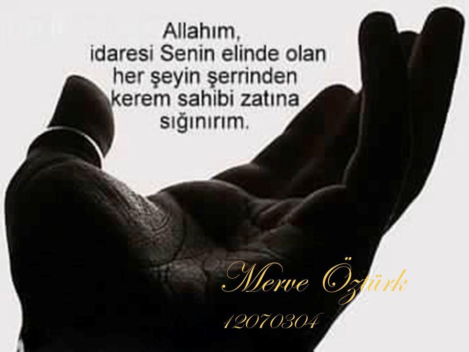 Merve Öztürk 12070304