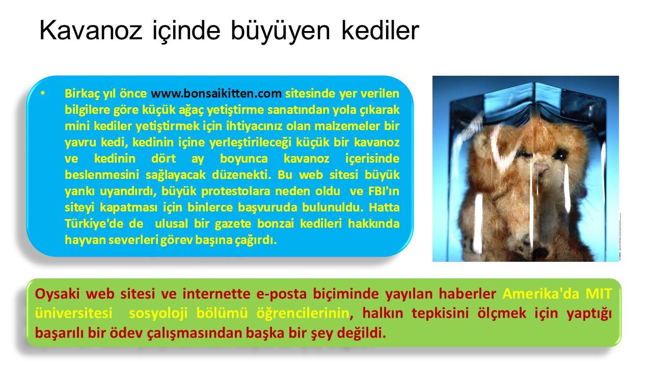 Kavanoz içinde büyüyen kediler Birkaç yıl önce www.bonsaikitten.com sitesinde yer verilen bilgilere göre küçük ağaç yetiştirme sanatından yola çıkarak mini kediler yetiştirmek için ihtiyacınız olan malzemeler bir yavru kedi, kedinin içine yerleştirileceği küçük bir kavanoz ve kedinin dört ay boyunca kavanoz içerisinde beslenmesini sağlayacak düzenekti.