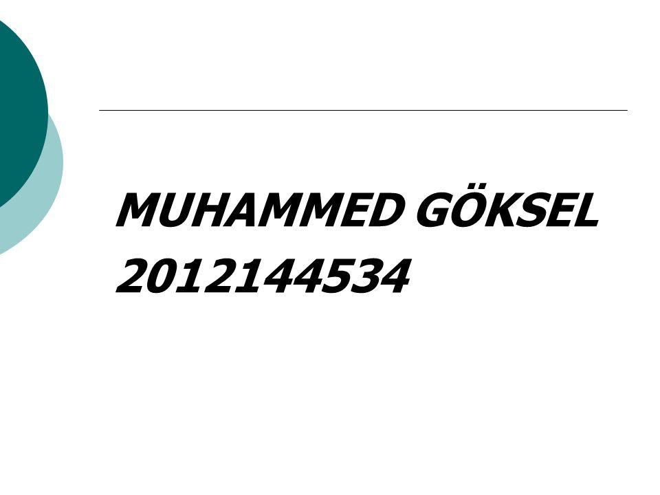MUHAMMED GÖKSEL 2012144534