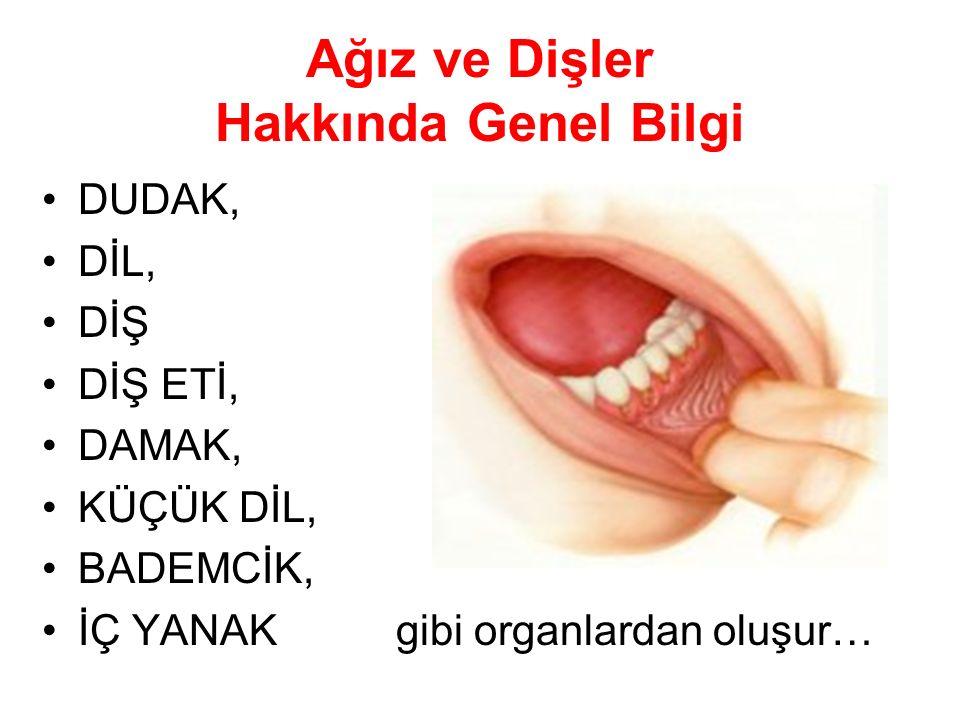 Ağız ve Dişler Hakkında Genel Bilgi DUDAK, DİL, DİŞ DİŞ ETİ, DAMAK, KÜÇÜK DİL, BADEMCİK, İÇ YANAK gibi organlardan oluşur…