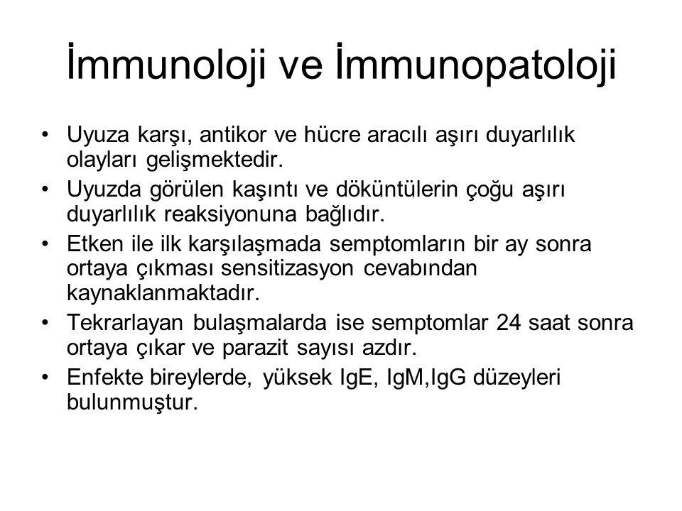 İmmunoloji ve İmmunopatoloji Uyuza karşı, antikor ve hücre aracılı aşırı duyarlılık olayları gelişmektedir. Uyuzda görülen kaşıntı ve döküntülerin çoğ