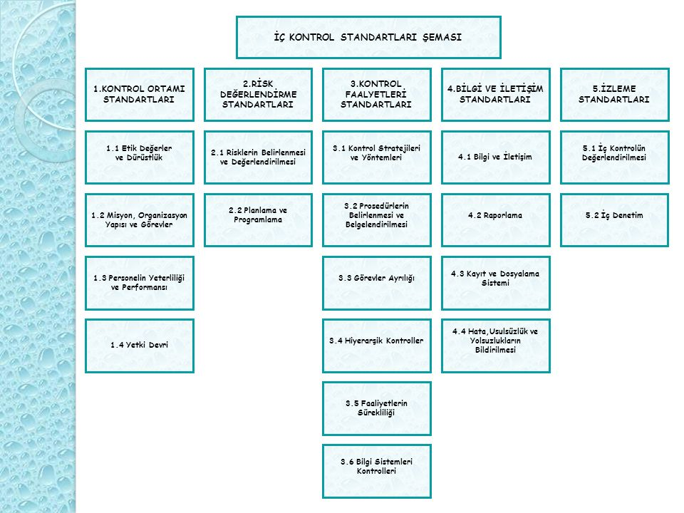 2.RİSK DEĞERLENDİRME STANDARTLARI 3.KONTROL FAALYETLERİ STANDARTLARI 4.BİLGİ VE İLETİŞİM STANDARTLARI 5.İZLEME STANDARTLARI 1.KONTROL ORTAMI STANDARTL