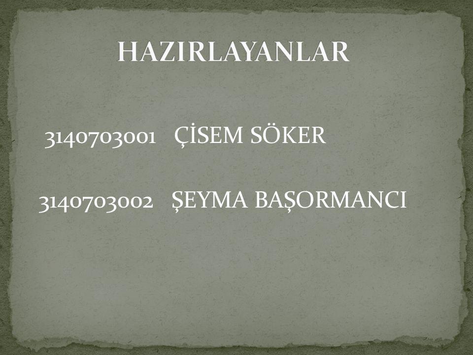 3140703001 ÇİSEM SÖKER 3140703002 ŞEYMA BAŞORMANCI