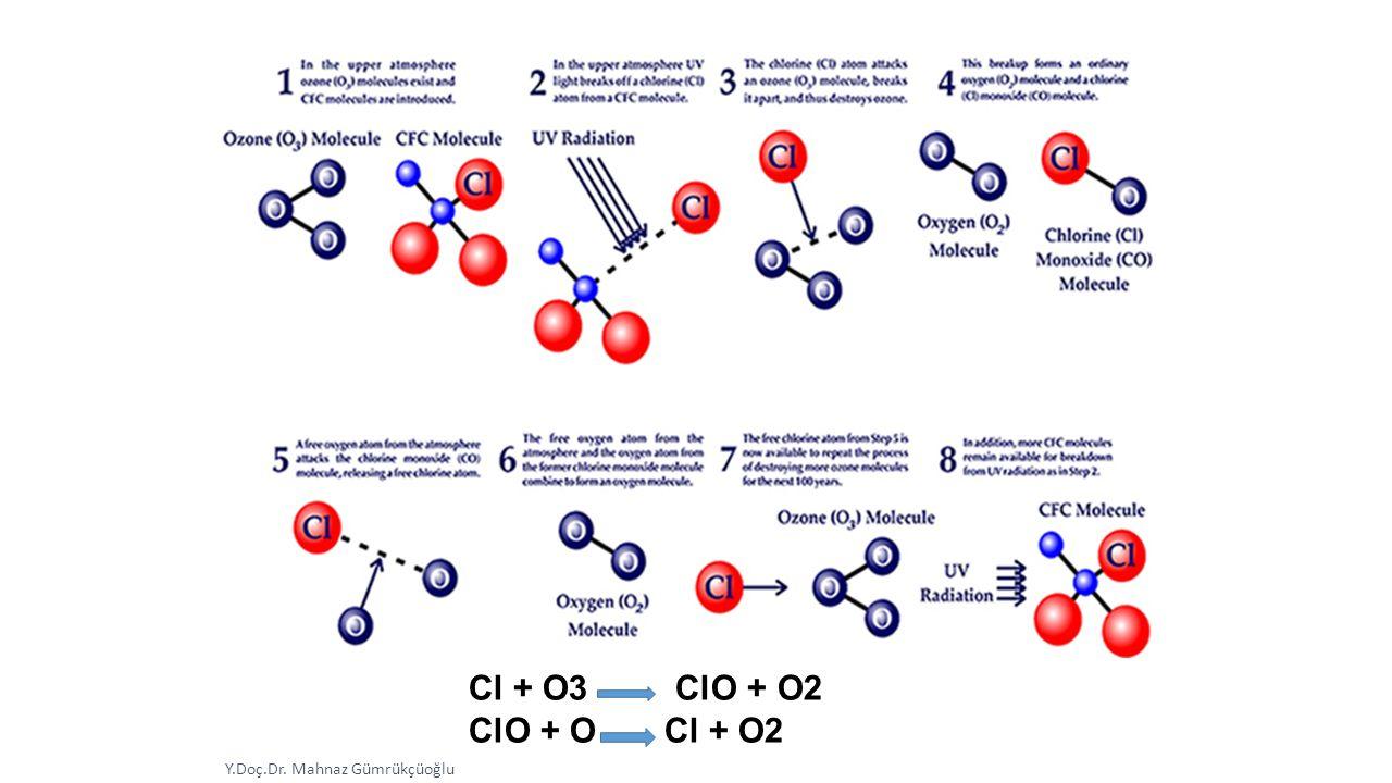 Y.Doç.Dr. Mahnaz Gümrükçüoğlu Cl + O3 ClO + O2 ClO + O Cl + O2