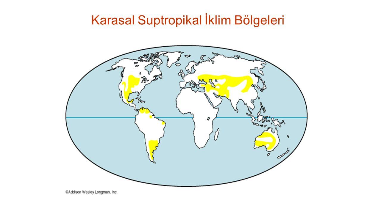 Karasal Suptropikal İklim Bölgeleri