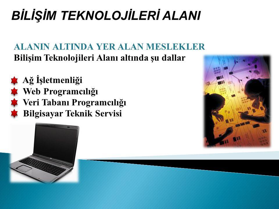 ALANIN ALTINDA YER ALAN MESLEKLER Bilişim Teknolojileri Alanı altında şu dallar Ağ İşletmenliği Web Programcılığı Veri Tabanı Programcılığı Bilgisayar Teknik Servisi BİLİŞİM TEKNOLOJİLERİ ALANI