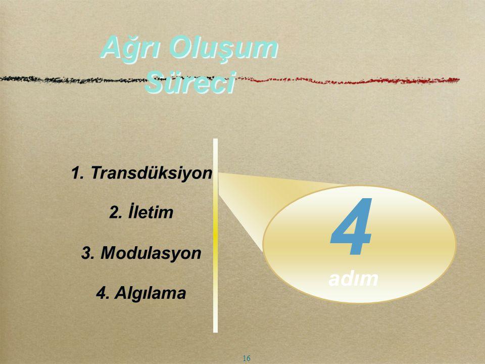 adım Ağrı Oluşum Süreci 2. İletim 3. Modulasyon 4. Algılama 1. Transdüksiyon 4 16