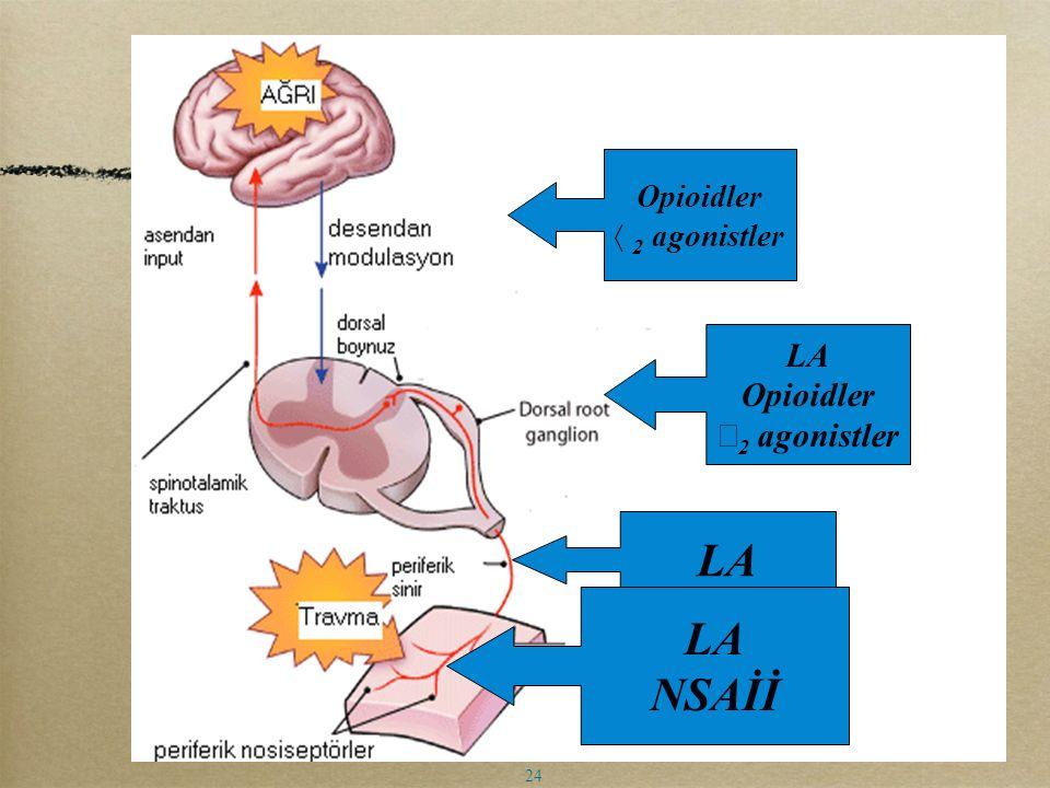 Opioidler  2 agonistler LA Opioidler  2 agonistler LA NSAİİ 24