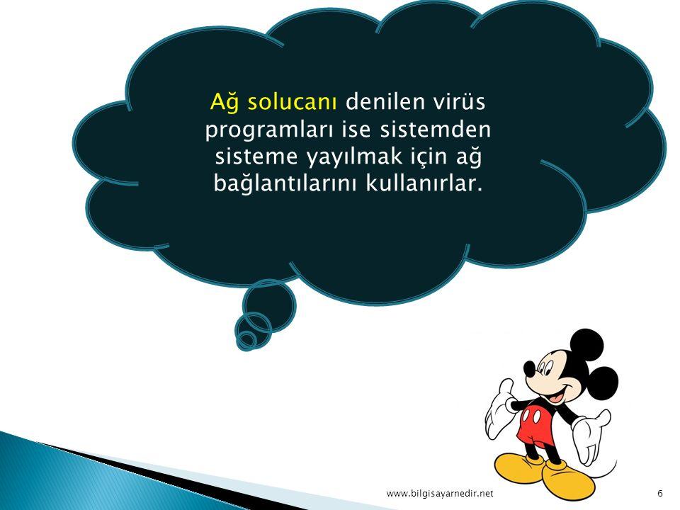 Ağ solucanı denilen virüs programları ise sistemden sisteme yayılmak için ağ bağlantılarını kullanırlar.