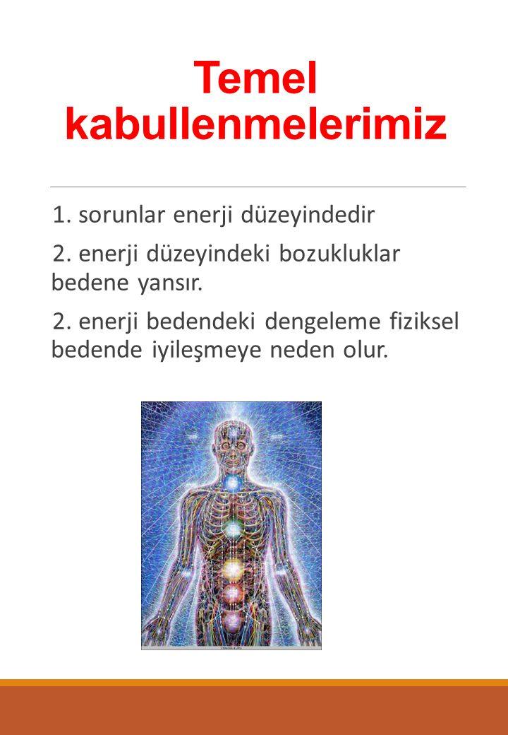 Temel kabullenmelerimiz 1. sorunlar enerji düzeyindedir 2.