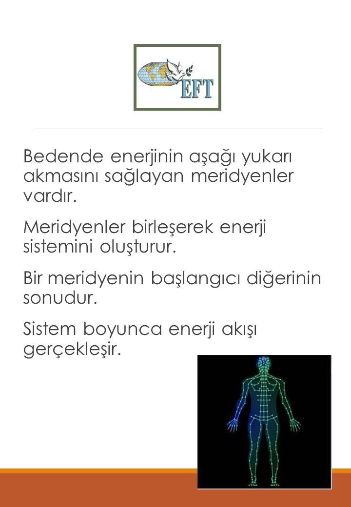 Enerji Sistemi Bedende enerjinin aşağı yukarı akmasını sağlayan meridyenler vardır.