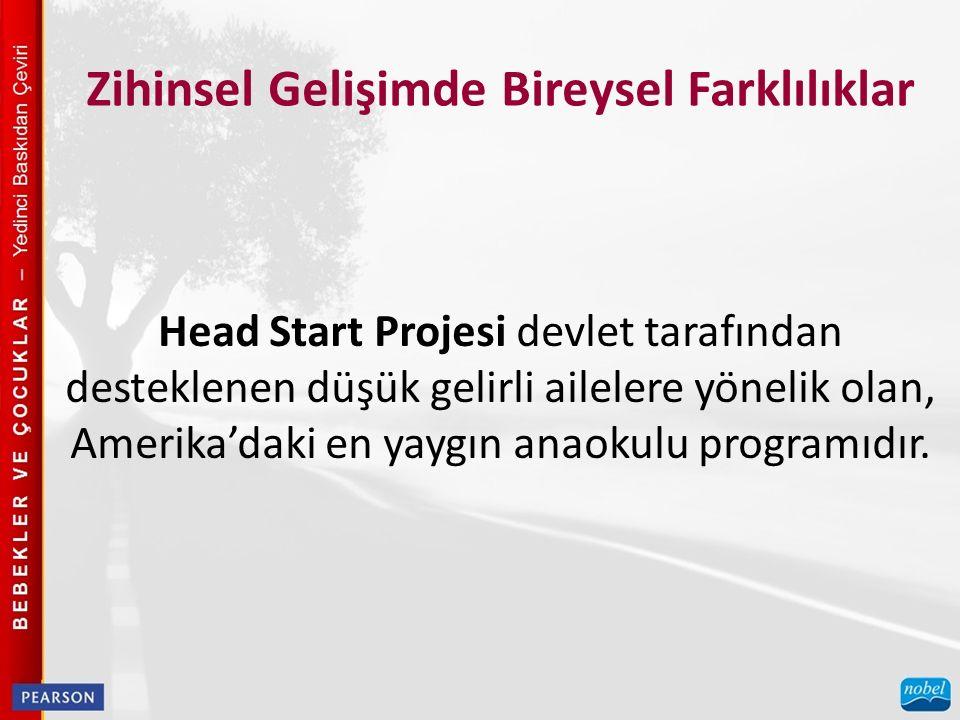 Zihinsel Gelişimde Bireysel Farklılıklar Head Start Projesi devlet tarafından desteklenen düşük gelirli ailelere yönelik olan, Amerika'daki en yaygın anaokulu programıdır.