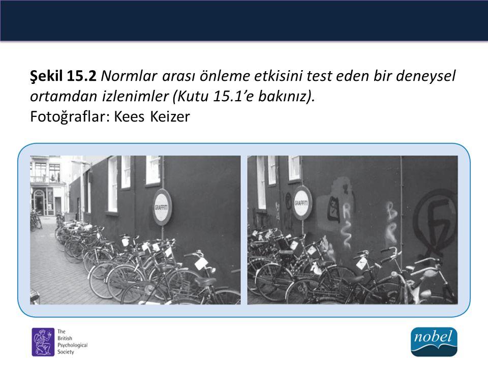 Şekil 15.2 Normlar arası önleme etkisini test eden bir deneysel ortamdan izlenimler (Kutu 15.1'e bakınız).