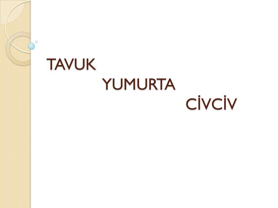 TAVUK YUMURTA C İ VC İ V