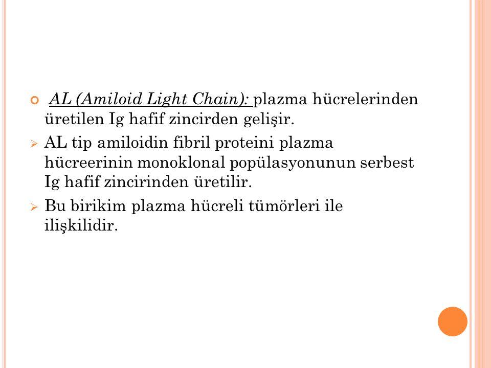 AL (Amiloid Light Chain): plazma hücrelerinden üretilen Ig hafif zincirden gelişir.  AL tip amiloidin fibril proteini plazma hücreerinin monoklonal p