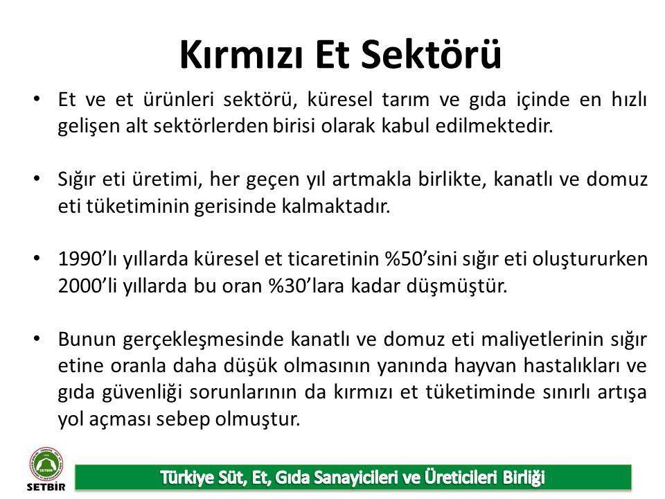 Türkiye Hükümetinin 2023 yılı için Vizyonu Nüfusun 85,1 milyon olacağı, Kişi başına kırmızı et tüketiminin 13 kg/yıldan 17 kg/yıla çıkacağı, Büyükbaş hayvan sayısının 2023 yılında 15,1 milyon, küçükbaş hayvan sayısının 37,8 milyon/baş olacağı, 2023 yılında kırmızı et üretiminin 1,6 milyon ton olacağı, bu üretimin %80'inin büyükbaş hayvanlardan, %20'sinin ise küçükbaş hayvanlardan elde edileceği, Küçükbaş hayvanlar için karkas veriminin 2013 yılında 20 kg'dan 2023'te 21 kg'a çıkacağı, Büyükbaş hayvanlar için karkas veriminin 2013 yılında 253 kg'dan 2023'te 300 kg'a çıkacağı varsayılmaktadır.