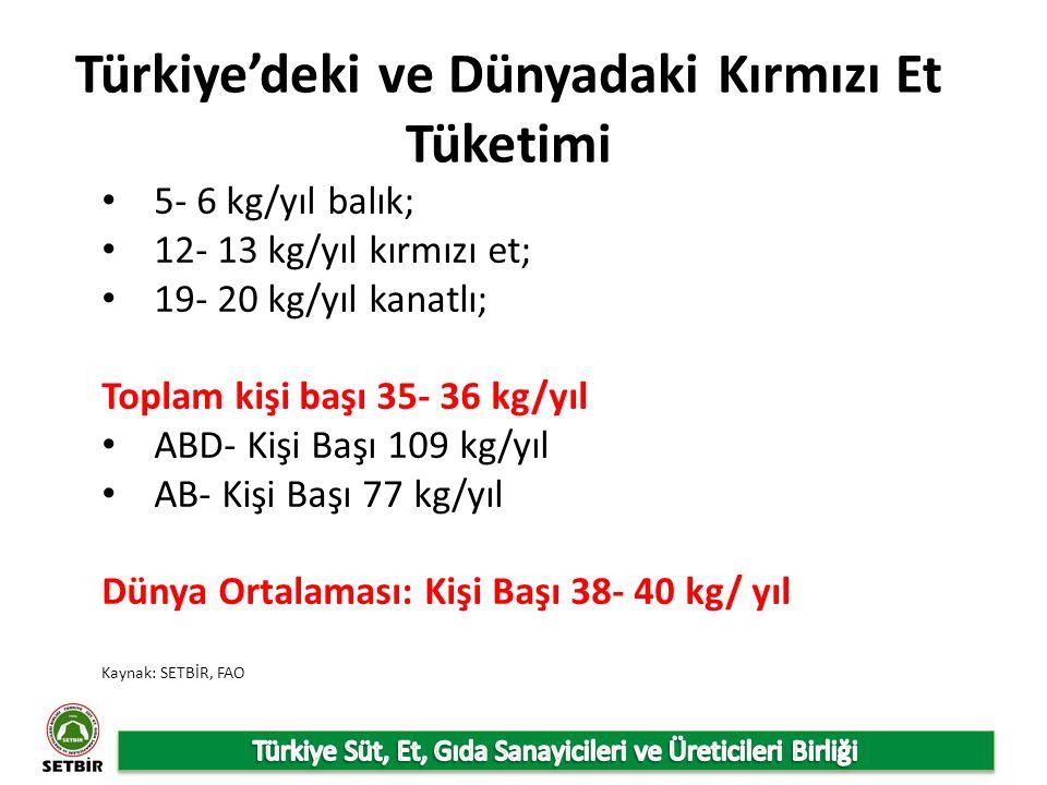 Türkiye'deki ve Dünyadaki Kırmızı Et Tüketimi Kaynak: SETBİR, FAO 5- 6 kg/yıl balık; 12- 13 kg/yıl kırmızı et; 19- 20 kg/yıl kanatlı; Toplam kişi başı 35- 36 kg/yıl ABD- Kişi Başı 109 kg/yıl AB- Kişi Başı 77 kg/yıl Dünya Ortalaması: Kişi Başı 38- 40 kg/ yıl