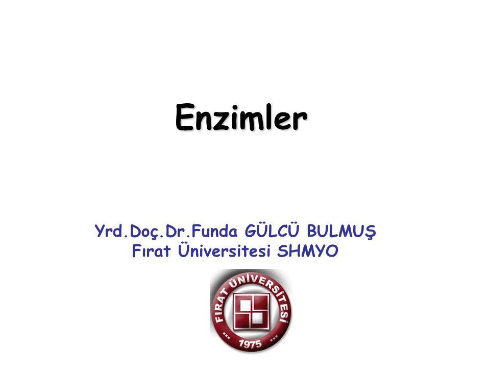 Enzimler Yrd.Doç.Dr.Funda GÜLCÜ BULMUŞ Fırat Üniversitesi SHMYO