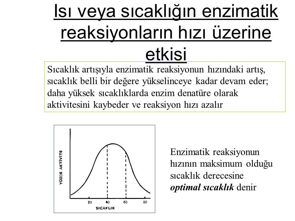 Isı veya sıcaklığın enzimatik reaksiyonların hızı üzerine etkisi Sıcaklık artışıyla enzimatik reaksiyonun hızındaki artış, sıcaklık belli bir değere y