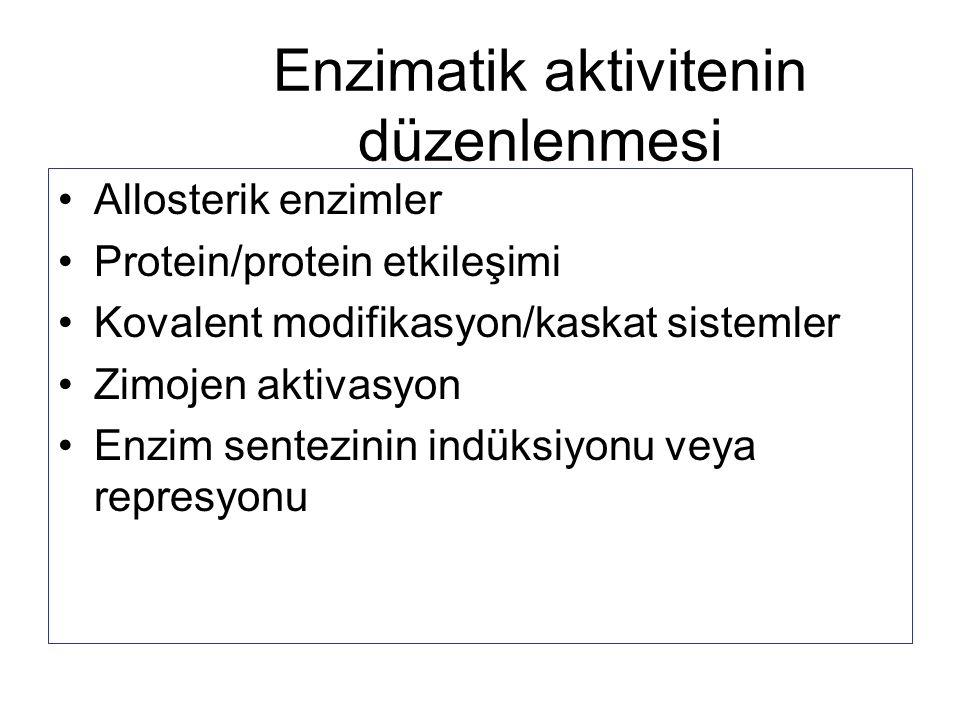 Enzimatik aktivitenin düzenlenmesi Allosterik enzimler Protein/protein etkileşimi Kovalent modifikasyon/kaskat sistemler Zimojen aktivasyon Enzim sent