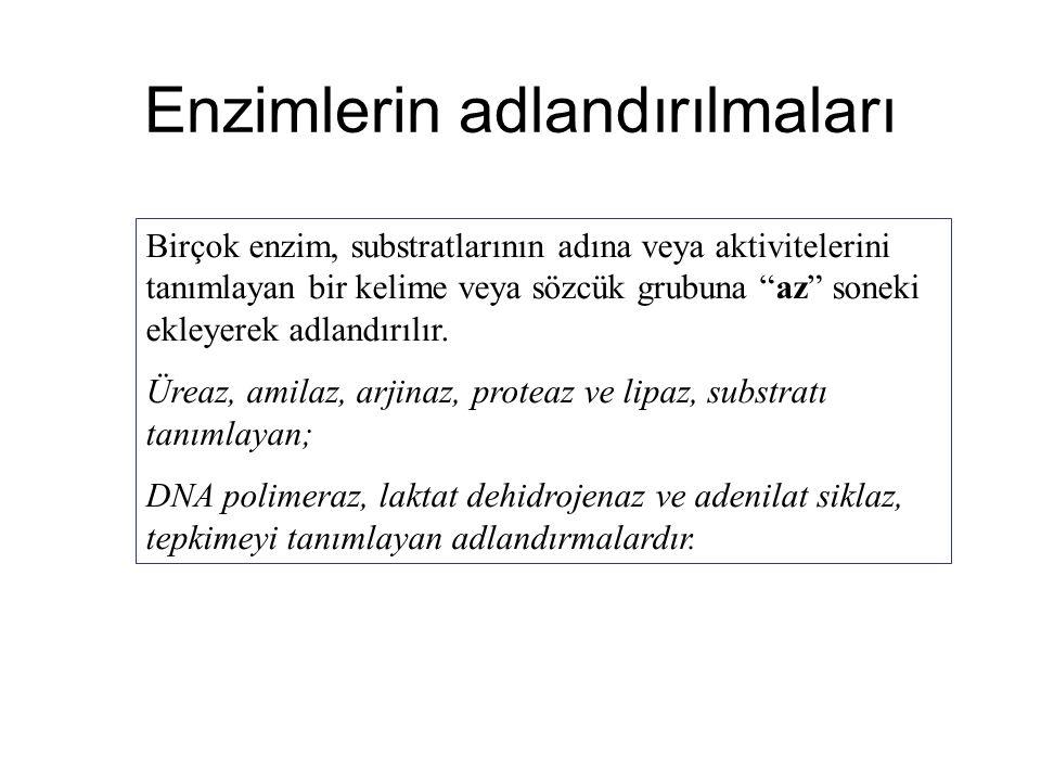 """Enzimlerin adlandırılmaları Birçok enzim, substratlarının adına veya aktivitelerini tanımlayan bir kelime veya sözcük grubuna """"az"""" soneki ekleyerek ad"""