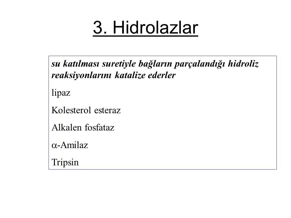 3. Hidrolazlar su katılması suretiyle bağların parçalandığı hidroliz reaksiyonlarını katalize ederler lipaz Kolesterol esteraz Alkalen fosfataz  -Ami