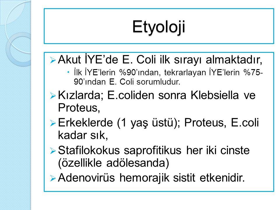 Etyoloji  Akut İYE'de E. Coli ilk sırayı almaktadır,  İlk İYE'lerin %90'ından, tekrarlayan İYE'lerin %75- 90'ından E. Coli sorumludur.  Kızlarda; E