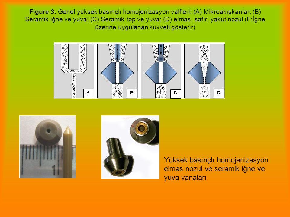 Figure 3. Genel yüksek basınçlı homojenizasyon valfleri: (A) Mikroakışkanlar; (B) Seramik iğne ve yuva; (C) Seramik top ve yuva; (D) elmas, safir, yak