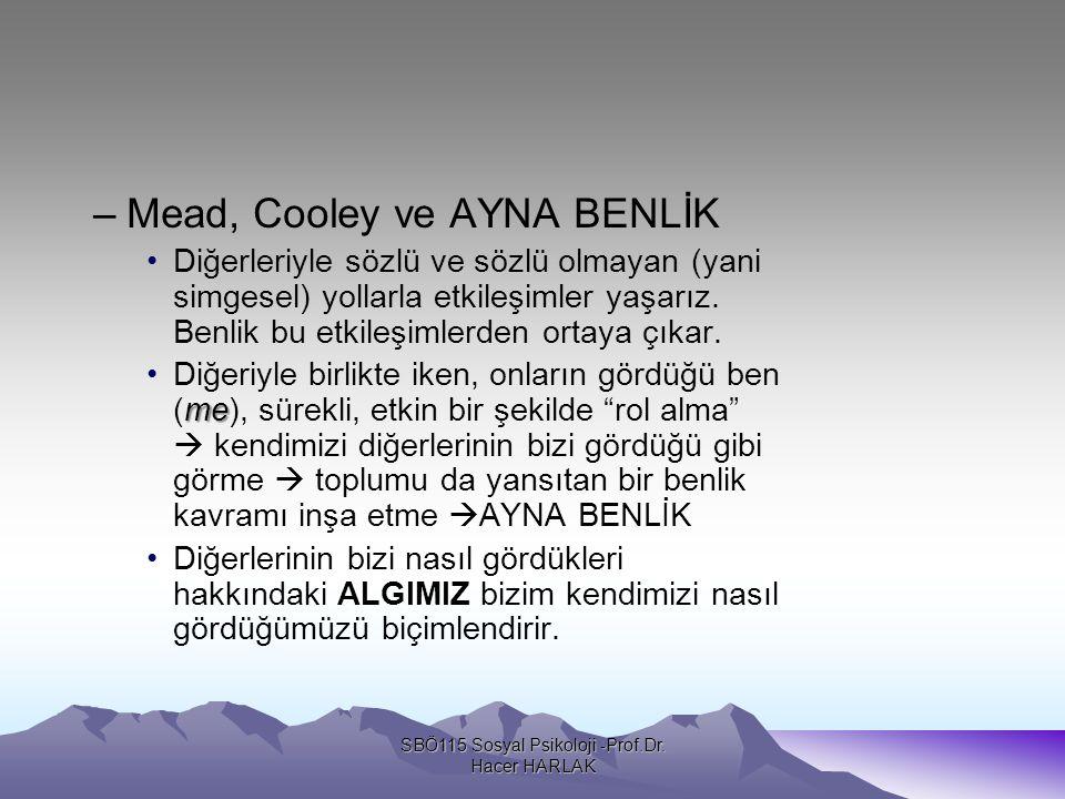 –Mead, Cooley ve AYNA BENLİK Diğerleriyle sözlü ve sözlü olmayan (yani simgesel) yollarla etkileşimler yaşarız.