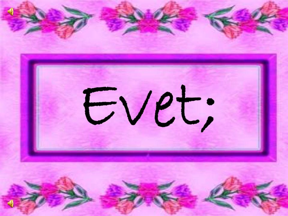 EVET; Biz, Biz Olmakla Gurur Duyuyoruz Bizi Bizden ba ş kasına Benzetmek isteyenlere HAYIR S O N