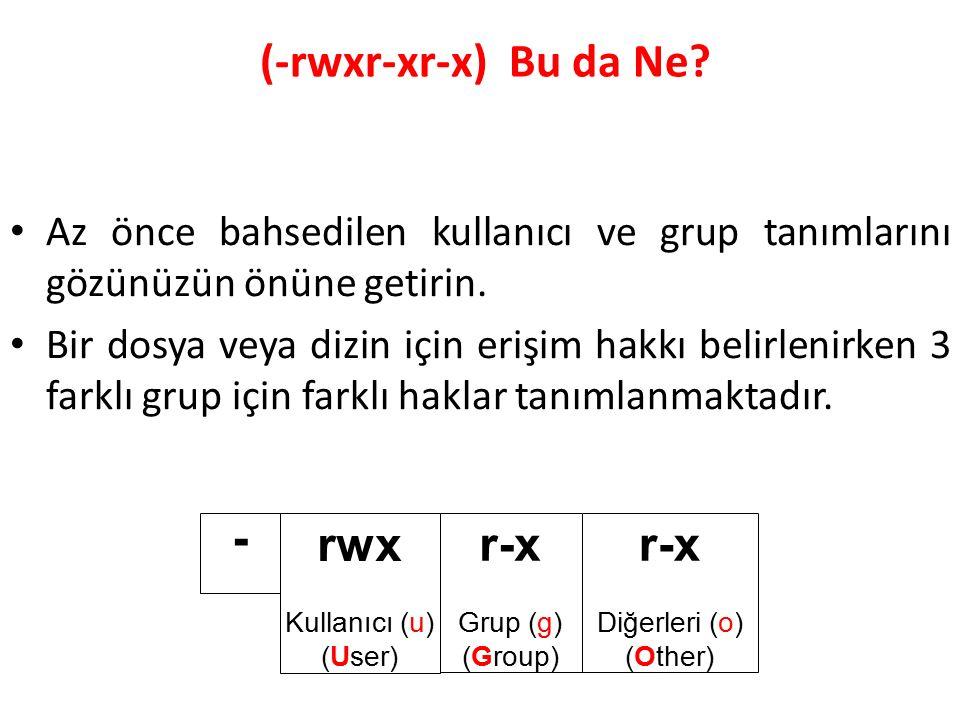 (-rwxr-xr-x) Bu da Ne.Az önce bahsedilen kullanıcı ve grup tanımlarını gözünüzün önüne getirin.