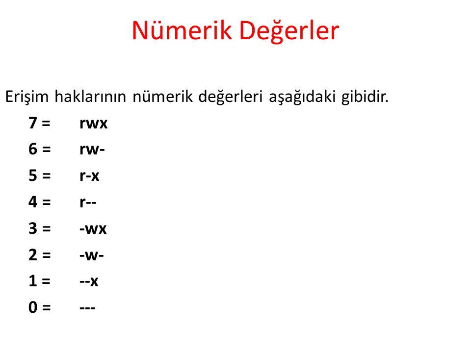 Nümerik Değerler Erişim haklarının nümerik değerleri aşağıdaki gibidir.